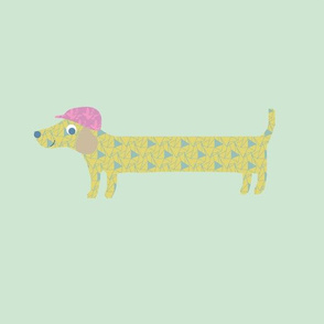 Sausage Dog Female