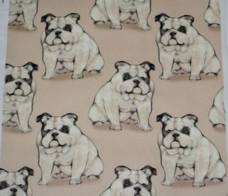 Sitting Bulldog, Tan