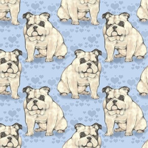 Sitting Bulldog with Blue hearts