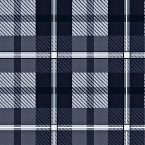gingham plaid - indigo ink