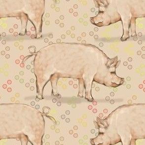 Hog and Bubbles