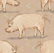 Hog and Beige Bubbles