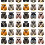 Multi owls