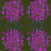 echo purple flowers