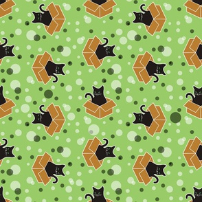 Black Cats in Boxes on Green