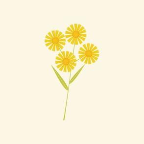 Sneezeweed Botanical