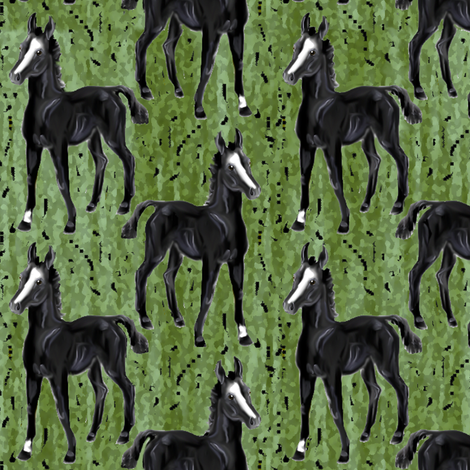 Black Foal on Greens