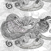 Rcephalopod_light_shop_thumb
