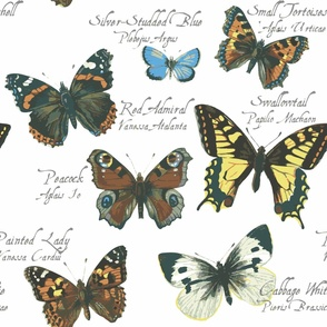 Vintage British Butterflies