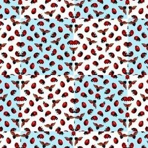 ladybugs ladybirds