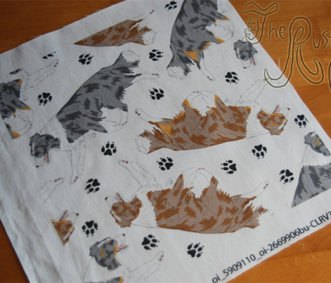 Trotting Border Collies and paw prints B - white