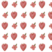 berries_REDS