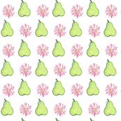 daisy pear