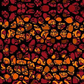 Autumn Geometrics