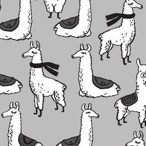 Llamas - Slate by Andrea Lauren