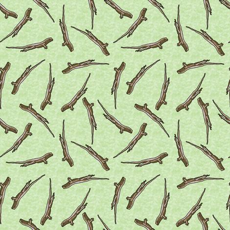 Lizards_on_texture_moss_C_a