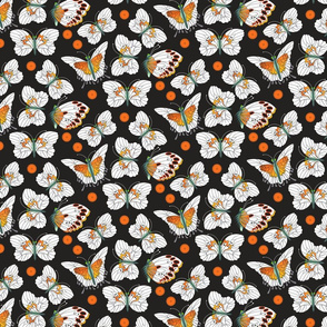 Orange and White Butterflies with Dots
