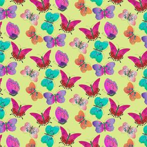 Fuchsia Magenta Aquamarine Butterflies