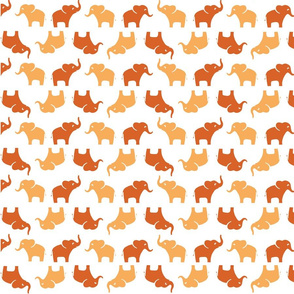 ELEPHANTS - ORANGE