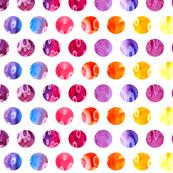 Squid Coordinate - Dots