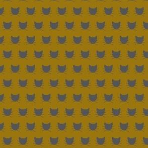 Tiny gray cat on mustard