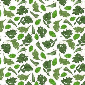 Botanical Sketchbook: Leaves Bg-White