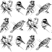 Pen & Ink Birds