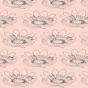 Clamshell floral