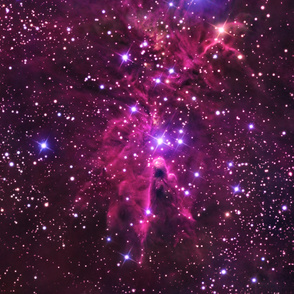Fox Fur Nebula - (Large, up to 3 YDS)