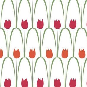 fine tulips