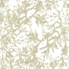 Seaweed Taupe