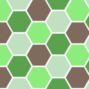 Honey Comb Green