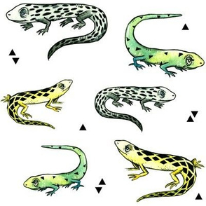 Lizards and Triangles
