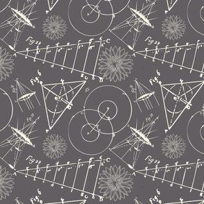 grey -schematics small