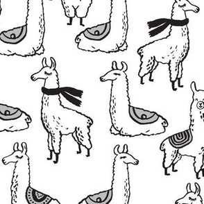 Llamas - Black and White by Andrea Lauren