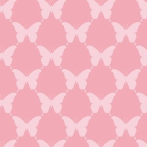 lauren_butterfly_geo_1