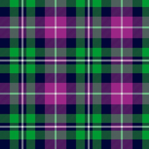 MacNeil tartan - green and purple