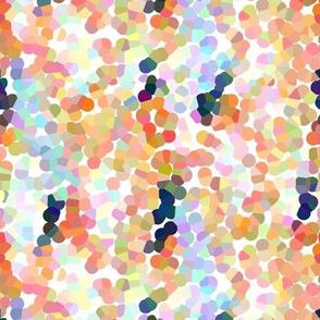 Pippa / Coral