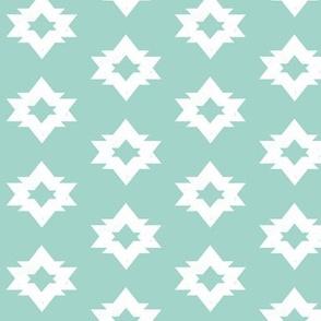 Aztec - Pale Turquoise by Andrea Lauren