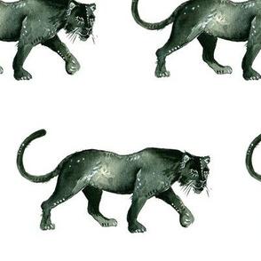 Panthers - half brick