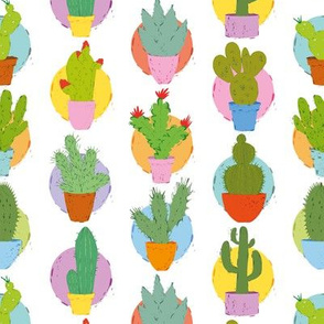Cactus - Assorted fabric
