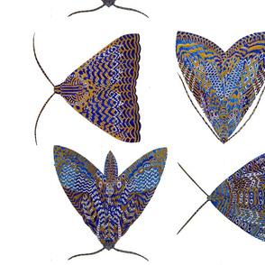 BLUE BUTTERFLIES & MY SCARF