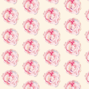 Shabby Chic Watercolor Roses on cream
