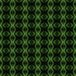 Green cat eyes plant