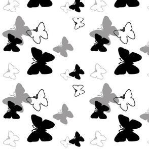 Black Grey Gray Butterfly Grayscale