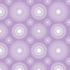 Protea Geo Lilac