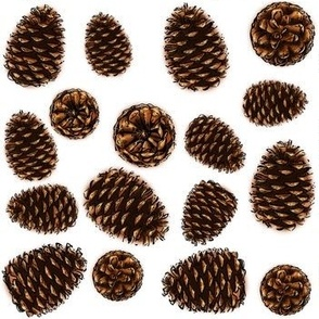 Pinecones Scattered