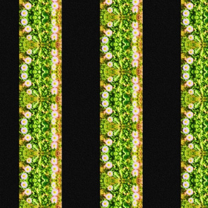Daisy Stripes - vertical