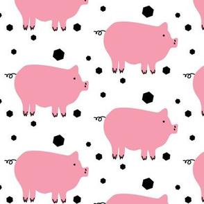 Here Piggy Piggy