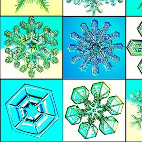 snowflakes14